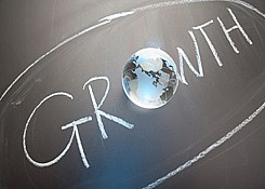 Emerging<br>Growth